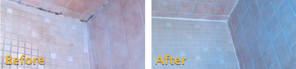 to Remove Mold in Shower Grout Grout Rhino Blog